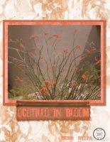 Blooming-Desert-000-Page-2.jpg
