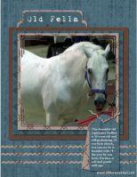 Jen-Hanson-003-Mocha-Blue-II-Old-Horse.jpg