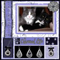 Charmed-Life-000-Page-1.jpg