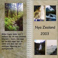 NZ-000-Page-1.jpg