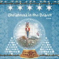 December-2008-_7-002-Christmas-in-Desert-Snowglobe.jpg