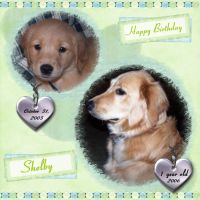 Happy-Birthday-Shelby-000-Page-1.jpg