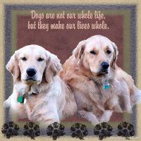 My_Dogs.jpg