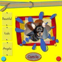 CAMILA2-000-Page-1_Medium_.jpg