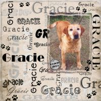 Gracie-000-Page-1.jpg