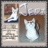 Jedi-000-Page-1.jpg