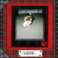 Lizzie-000-Page-1.jpg