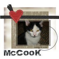 McCook_Web.jpg