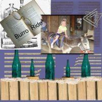 Family-003-Burro-Ride.jpg