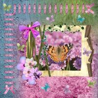 Butterfly_delight.jpg
