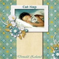 Cat_Nap.jpg