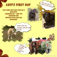 Copy-of-Lucy---first-day-000-Page-1.jpg
