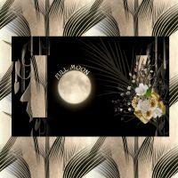 DGO_Sepia_Shine-000-Page-1.jpg