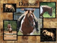 Dawson-000-Page-1.jpg