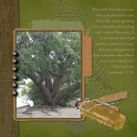 Inspirations-002-Faith-Tree.jpg