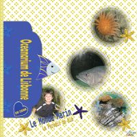 Louise_SeaAdventure-001-Aquarium_Lisbonne_082008.jpg