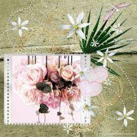 Perfectly_Pink.jpg
