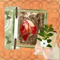 Rose_petals_Dew_drops.jpg
