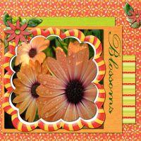 Spring_Sentiments_1.jpg