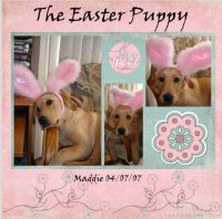 The_Easter_Puppy.jpg