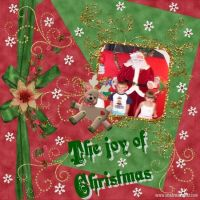 The_joy_of_christmas.jpg
