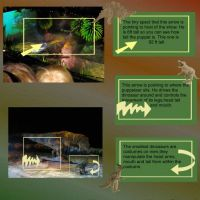 Walking-with-Dinosaurs-003-weekly-Page-10.jpg