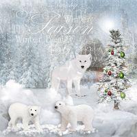 WinterBeauty2.jpg