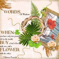 Words_of_wisdom.jpg