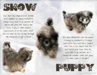 publish-2-000-Winter-06-07-B-Page-8.jpg