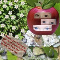 sbmfriendsstuff-009-applesofmyeye.jpg