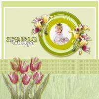 tulips2.jpg