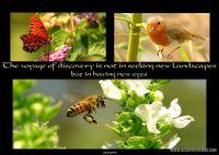 Copy-of-Copy-of-Copy-of-Copy-of-inspirations-008-Page-9.jpg