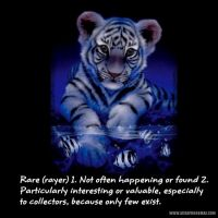 White-Tigers-000-Page-1.jpg