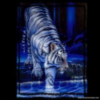 White-Tigers-001-Page-2.jpg