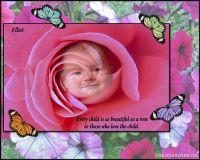 rosechild2-kq.jpg