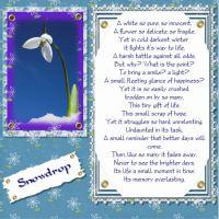 Copy-of-snowdrop-000-Page-1.jpg