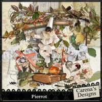 Carena-Pierrot-Kit-600A.jpg