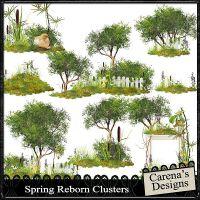 Carena-Spring-Reborn-Clusters.jpg