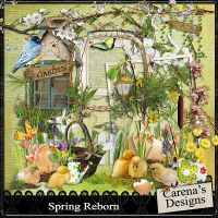 Carena-Spring-Reborn-Kit.jpg