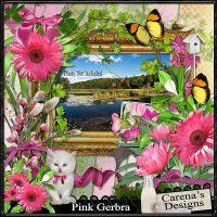 Carena_Pink-Gerbra.jpg