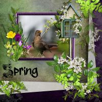 Carena_SweetLoveofSpring-LO1.jpg
