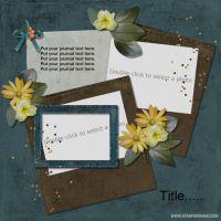 Carena_s-Dec-Designer-Challenge-DLT-000-Page-1.jpg