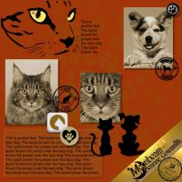 DGO_Dog_Cat_Collection_1-002-Page-3.jpg