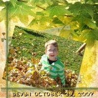 DGO_MMW-falling-leaves-000-Page-2_800_x_800_.jpg
