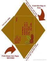 DLT-card-envelope-8_5x11-inch-paper-001-Page-2.jpg