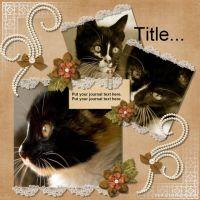Fiona_s-Timeless-Elegance-Challenge-DLT-000-Page-1.jpg