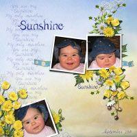 Sunshine3.jpg