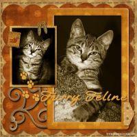 Vintage-Kitty-002-Page-3.jpg
