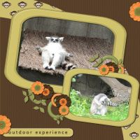 Zoo_2.jpg