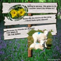 Spring-000-Page-1.jpg